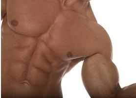 biceps 21