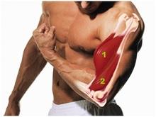 triceps trening